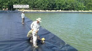 báo giá cung cấp sỉ và lẽ vãi bạt ao hồ chứa nước HDPE tính theo m2 bạt